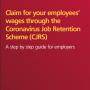 Coronavirus Job Retention Scheme Claims